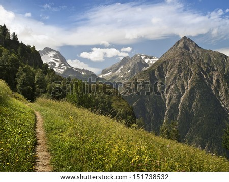 Alpine landscape, with a path leading to the mountains - stock photo