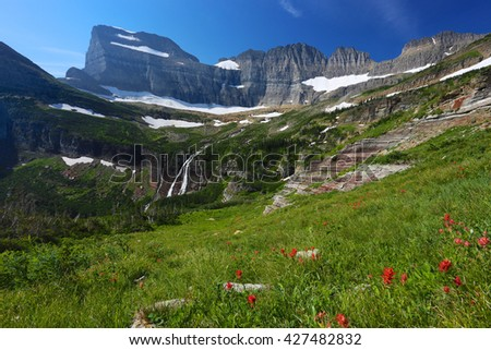 Alpine meadow flowers and mountains Grinnell Glacier National Park Montana - stock photo