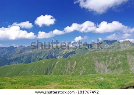 Alpine meadow in Fagaras mountains, Romania. - stock photo