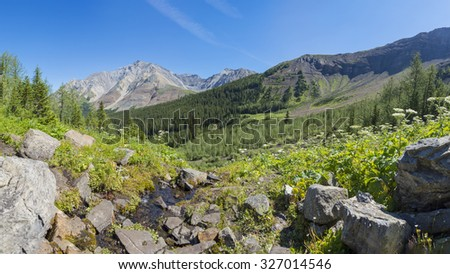 Alpine Meadow With Rugged Mountains in the Rocky Mountains Kananaskis Alberta Canada - stock photo