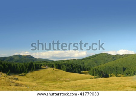 Alpine plateau with fir tree forests. - stock photo