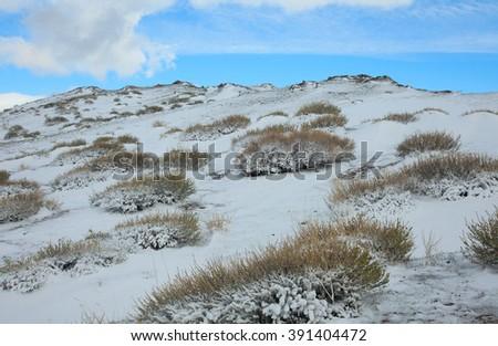 alpine tundra winter day on a background of blue sky - stock photo