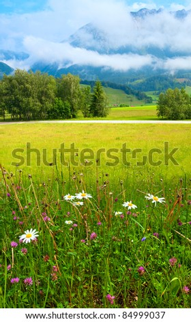 Alps mountain meadow tranquil summer view - stock photo