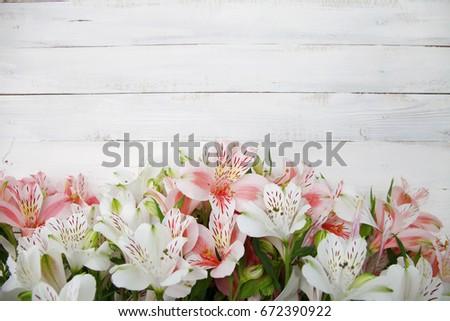 Alstroemeria flowers background alstroemeria flowers alstroemeria alstroemeria flowers background alstroemeria flowers alstroemeria bouquet of alstroemeria flowers on white wooded mightylinksfo