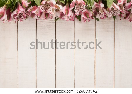 Alstroemeria Flowers on wooden background  - stock photo