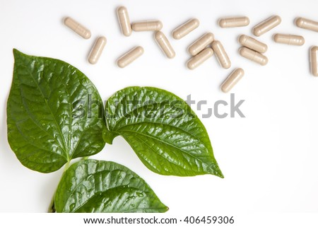 alternative health care concept. idea with herbal capsules and green leaf on white background - stock photo