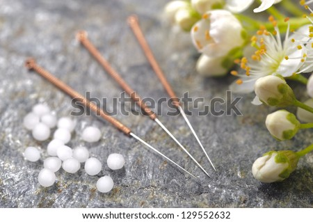 alternative medicine with homeopathic herbal pills and acupuncture needles - stock photo