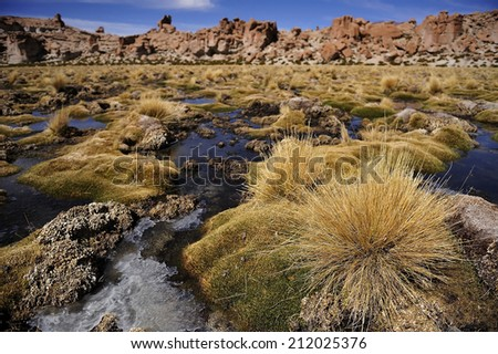 Altiplano high plateau with the creek, Andes Mountains, Bolivia - stock photo