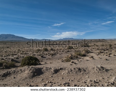 Altiplano in Bolivia - stock photo