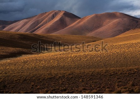 Altiplano plateau in Bolivia - stock photo