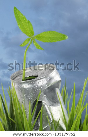 Aluminum wet can with growing plant on the green grass - stock photo