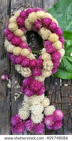 """amaranth  garland/ flowers and using them in decorations, which are different from other places. Thai garlands called """"Phuang Malai"""" - stock photo"""
