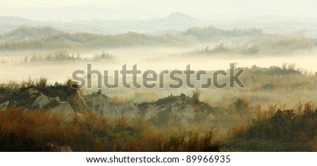 Amazing Beautiful cloud, fog and mist with yellow bamboo and hill - stock photo