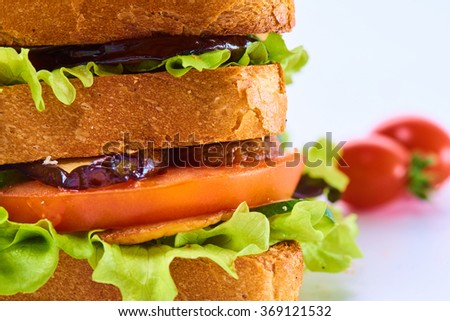 amazing big tasty fresh vegetarian or meat club sandwich with fresh vegetables and herbs studio close up close up.