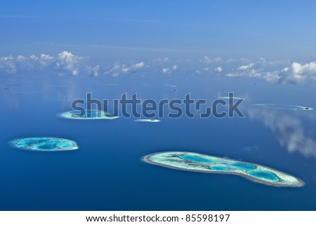 Amazing Coral Reefs On A Windless Day