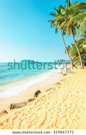 Amazing exotic beach with golden sand and tall palm trees against the azure sea and blue sky - stock photo