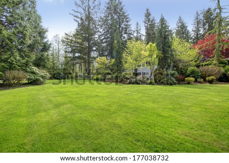 Amazing farm house backyard with green lawn, fir trees, bushes - stock photo
