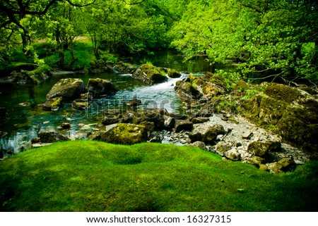 Amazing green, lush river scene - stock photo