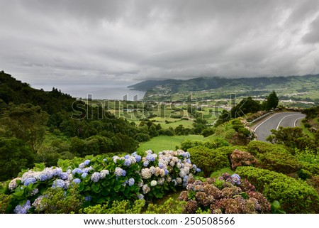 Amazing landscape of outstanding natural beauty. Regional road on the island of Sao Miguel, with flowers typical of the Azores. - stock photo