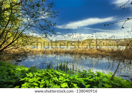 amazing of the wild nature - stock photo