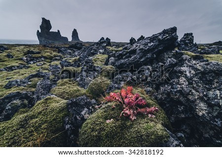 amazing rock formation in Iceland - stock photo