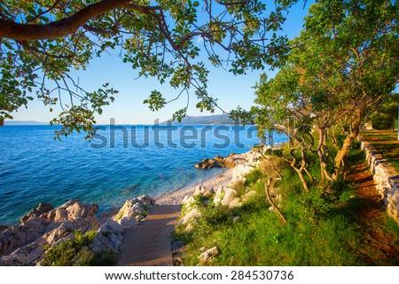 Amazing rocky beach with crystalic clean sea water with pine trees on the coast of Adriatic Sea, Istria, Croatia - stock photo