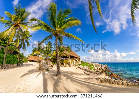 Amazing seascape with palms in Xcaret park in Mexico