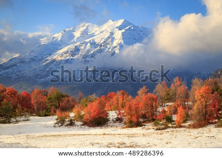 Amazing september snow storm with fall color in the Wasatch Mountains, Utah, USA.