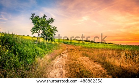Amazing sunset over fields of Tuscany with country road in the foreground
