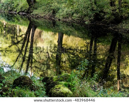 Amazing tree reflections in the river Wharfe at Bolton Abber, Skipton, Yorkshire, UK