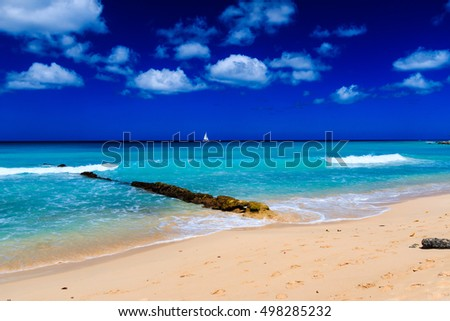 AMAZING TROPICAL BEACH. BEACH THERAPY.