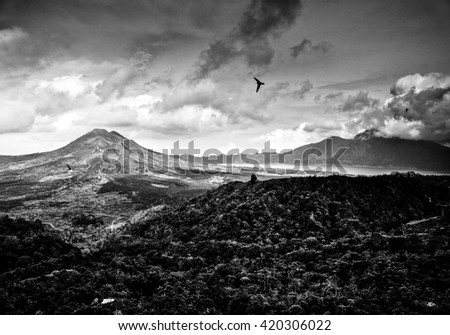 Amazing tropical landscape of mountains and flying birds. Indonesia - Bali. Black-white photo. - stock photo