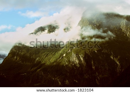 Amazing Valley located in NZ, foggy and mysterious - stock photo