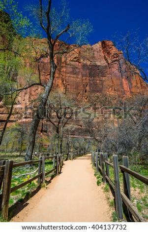 Amazing view of Zion national park, Utah - stock photo