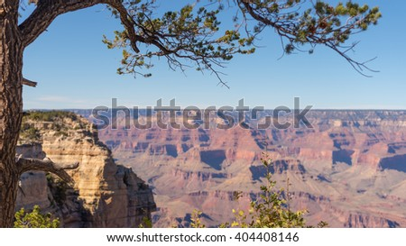 Amazing view with a dried tree from a mountain top to the sunny Grand Canyon, USA - stock photo