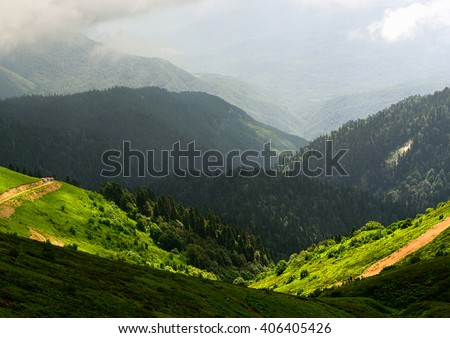 Amazing wild nature view of deep evergreen forest landscape on sunlight at middle of summer. Natural green scenery of cloud, road and mountain slopes that look as valley on background. Russia, Sochi - stock photo