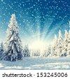 amazing winter landscape - snowfall, sunlight and blue sky - stock photo
