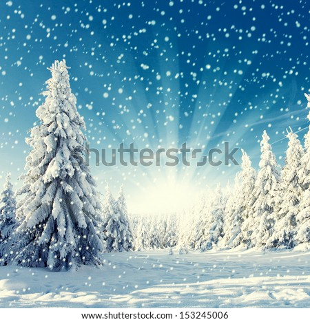 amazing winter landscape - snowfall, sunlight and blue sky - stock photo