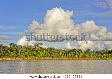 Amazon Basin, Tambopata National Park, Peru - stock photo