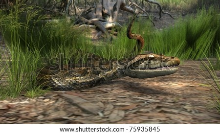 amazon forest python - stock photo