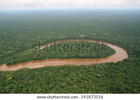 Amazon jungle - stock photo