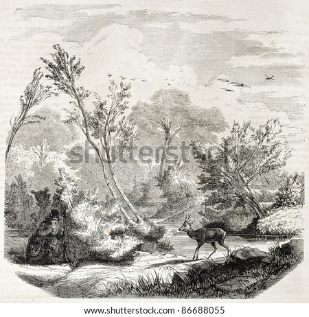 Ambush in roe hunting old illustration. Created by Lallemand, published on L'Illustration, Journal Universel, Paris, 1860