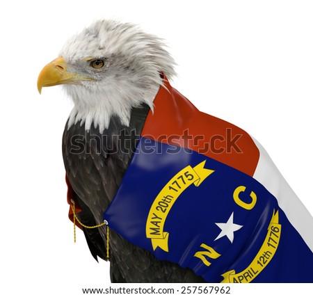 American bald eagle wearing the North Carolina state flag - stock photo
