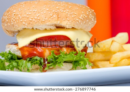 American cheese burger with fresh salad and french fries