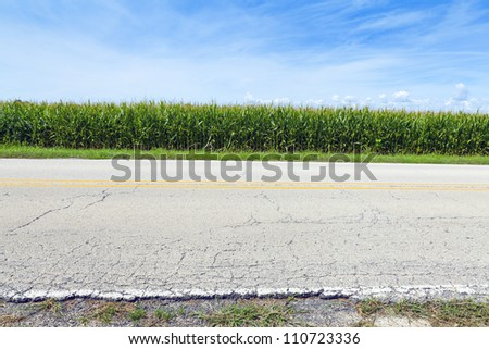 American Country Road Side View - stock photo