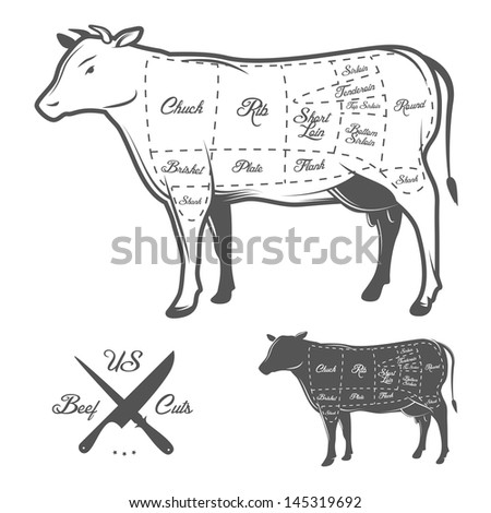 American cuts of beef - stock photo