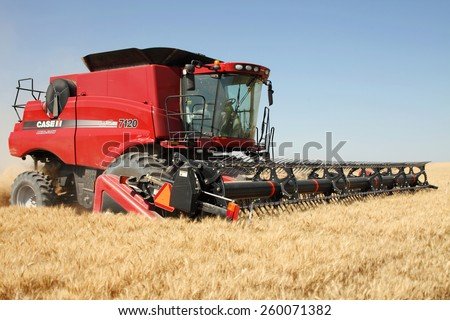 American Falls, Idaho, USA August 7, 21013 A combine harvesting ripe wheat in the fertile farm fields of Idaho. - stock photo