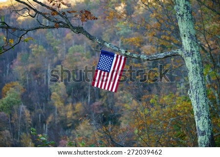 American flag hanging on the tree branch. - stock photo