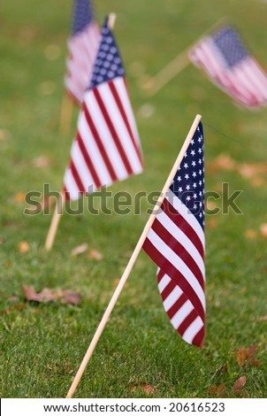 American flags - stock photo