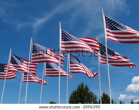 American Flags Flying - stock photo